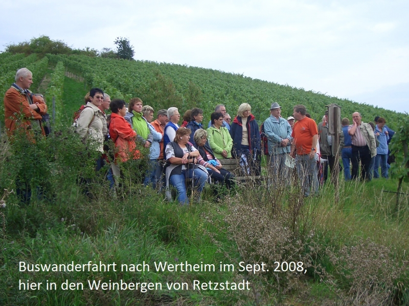 2008-09-Wertheim.Sept.08 003